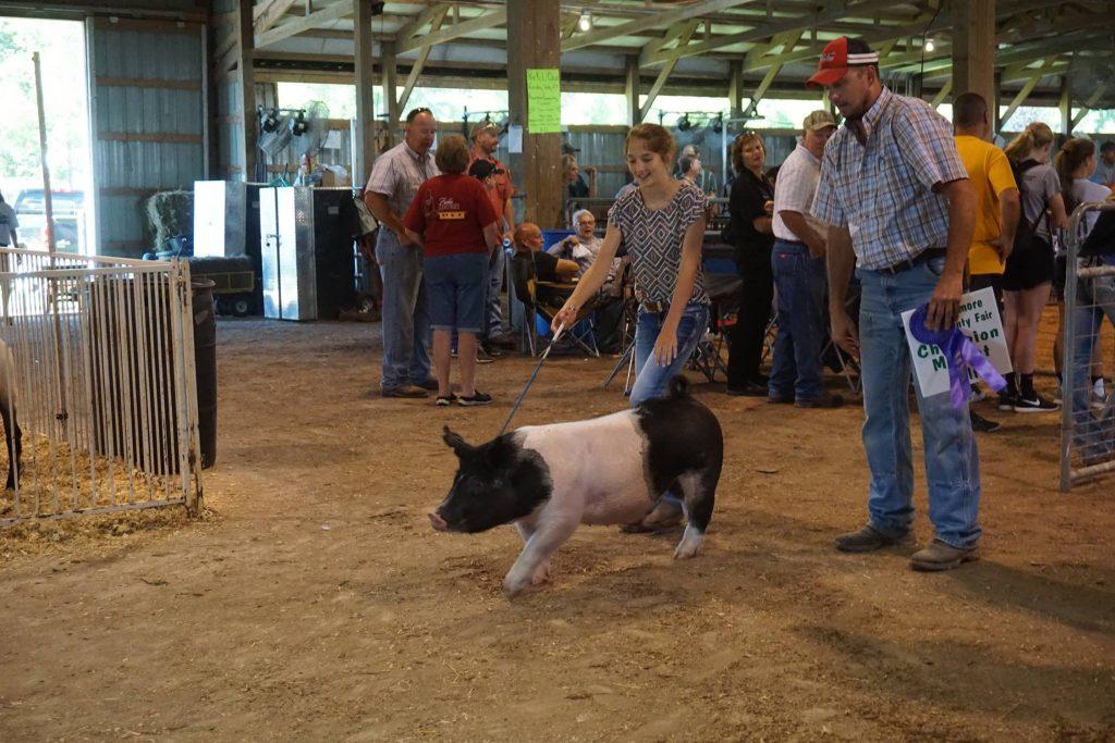 Fillmore County Fair @ Fair Grounds | Preston | Minnesota | United States