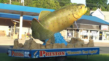 preston-fish