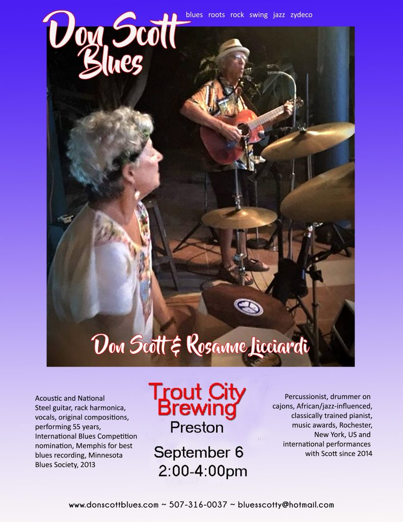Don Scott Blues at Trout City! @ Trout City Brewing