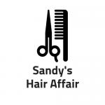 Sandy's Hair Affair